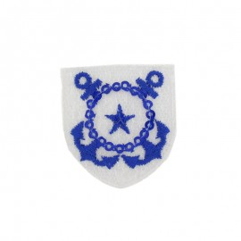 Thermocollant Pailleté badge étoile