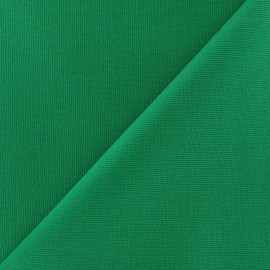 Cotton Canvas Fabric - CANAVAS Apple Green x 10cm