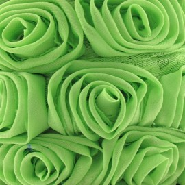 Galon rose sur tulle vert x 50 cm