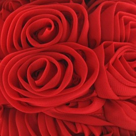 Galon rose sur tulle rouge x 50 cm