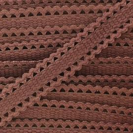 Elastic lace ribbon - brown