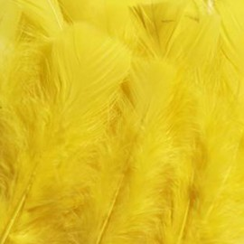 Lot de 12 minis plumes jaunes