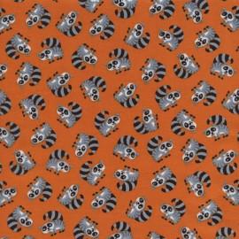Tissu Mini Racoons Orange x 10cm