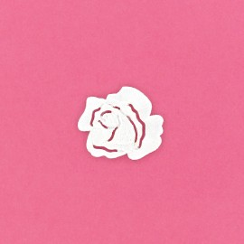 Thermocollant Fleur Rose blanche