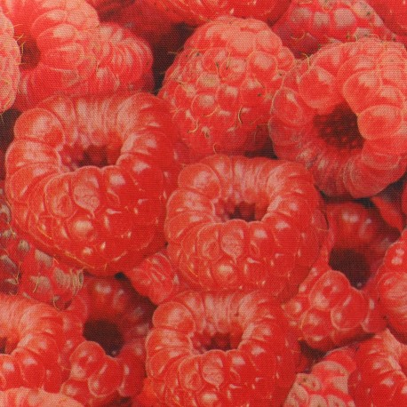 Tissu Polyester Raspberry Burling x 10cm