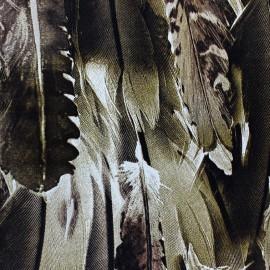 Tissu Royal Micro Satin plumes Taupe / Marron x  50cm