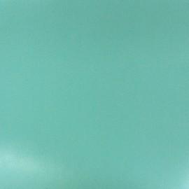 Imitation leather green x 10cm