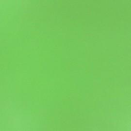 Simili cuir vert clair x 10cm