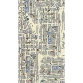 Tissu Passport - New york city mapin light x 59cm