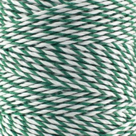 bakers twine string 2 mm - green