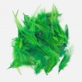 35 feathers - green