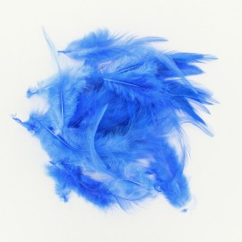 Sachet de 35 plumes bleues