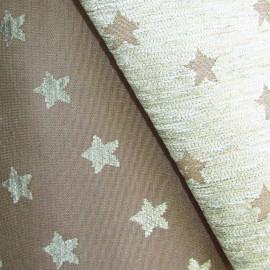 Tissu toile velours étoile mousse/taupe x10cm