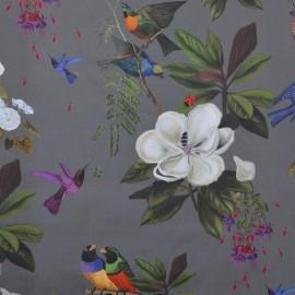 Velvet fabric Il était une fois - anthracite x 62 cm