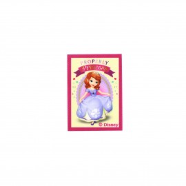 Sofia the First Properly Princesses canvas Iron-on patch  - ecru
