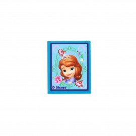 Sofia the First flowers & hearts canvas Iron-on patch - blue