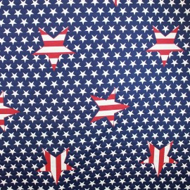 ♥ Coupon 280 cm X 140 cm ♥ Tissu American Star