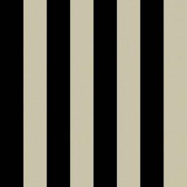 Tissu toile transat - noir/ficelle x 10cm