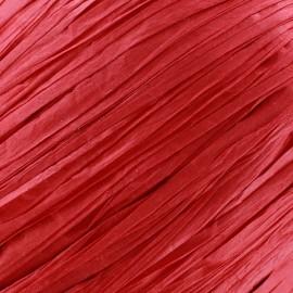 Raphia rouge (pelote de 55m)