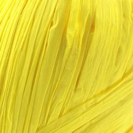 Raphia jaune (pelote de 55m)