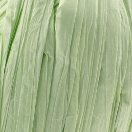 Raphia vert clair (pelote de 55m)