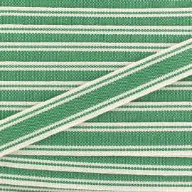 Ruban gros grain Playa 20 mm - vert x 1m