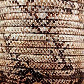 Cordon simili cuir Snake - naturel x 1m