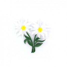 Thermocollant Fleur double Edelweiss brodé