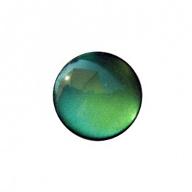 Pearly aspect round-shaped button - meadow green