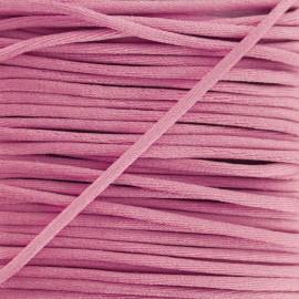 queue de rat 2,5 mm rose