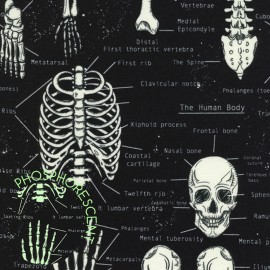 Tissu Timeless Treasures Glow in the Dark Skeletons - black x 10cm