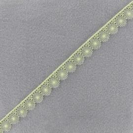 Ruban dentelle Petite Juliette - vert clair x 1m