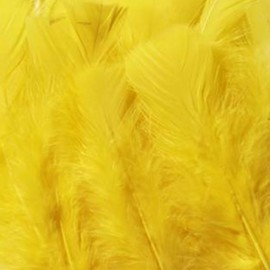 A pack of 20 feathers - yellow