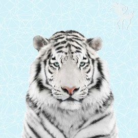 Cotton fabric panel - white tiger 70 cm x 140 cm