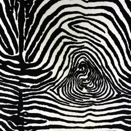 Tissu Velours ras - Zebra x 10cm