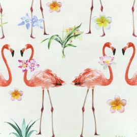 Tissu toile impression digitale Tropical dreams (280cm) - crème x 15cm