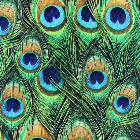 Tissu toile coton Plumes de Paon x 10cm