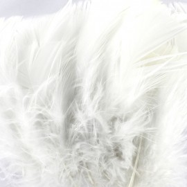 A pack of fluff feathers - white