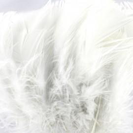 Sachet de plumes duvet colorées - blanc