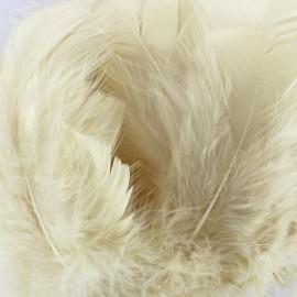 Sachet de plumes duvet colorées - écru