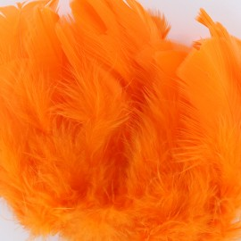 Sachet de plumes duvet colorées - orange