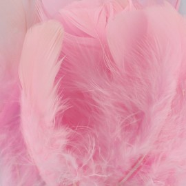 A pack of fluff feathers - pink