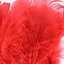 A pack of fluff feathers - red