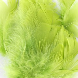 A pack of fluff feathers - green