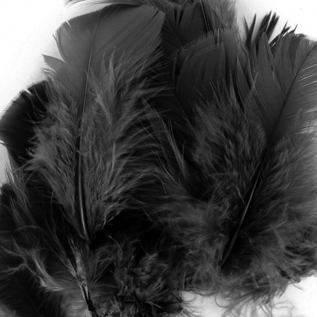 A pack of fluff feathers - black