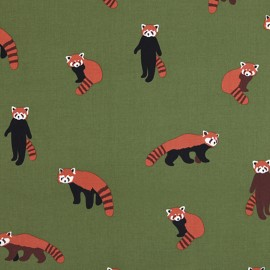 Coated cotton fabric Daily Like - Lesser Panda x 10cm