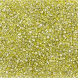 TOHO Seed beads 11/0 X 3g N°457