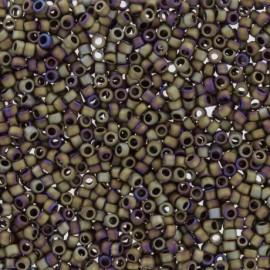 TOHO Seed beads 11/0 X 3g N°614