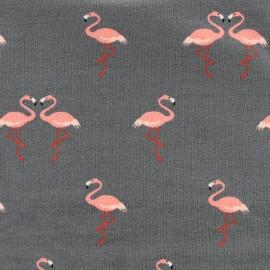 Tissu Jersey Flamingo love - gris x 10 cm