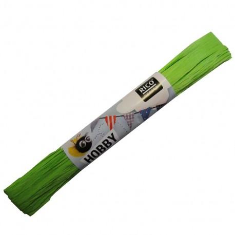 Raffia ribbon - light green